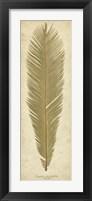 Framed Sago Palm II