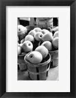 Framed Farmer's Market IV