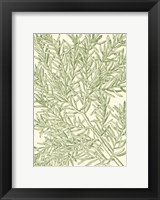 Framed Mossy Branches I
