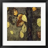 Wet Pavement I Framed Print