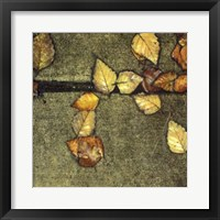 Wet Pavement III Framed Print