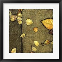 Wet Pavement IV Framed Print