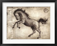 Roman Horse II Framed Print