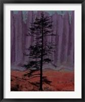 Aurora II Framed Print