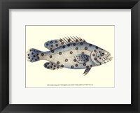 Antique Fish I Framed Print