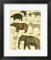 Framed Elephant & Zebra
