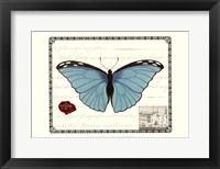 Butterfly Prose IV Framed Print