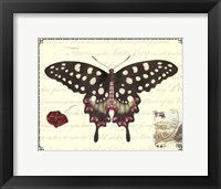 Framed Butterfly Prose V