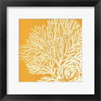 Framed Saturated Coral I