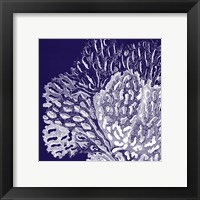 Saturated Coral III Framed Print