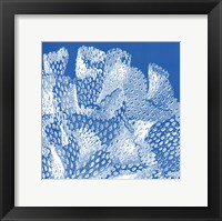 Saturated Coral IV Framed Print