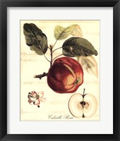 Framed Custom Tuscan Fruits I (AO)