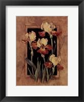 Framed Iris Framed Print