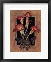 Framed Calla's Framed Print