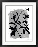 Framed Silver Shade I