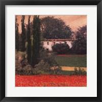 Poppies I Framed Print