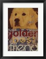 Framed Goldie