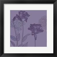 Framed Roses #2