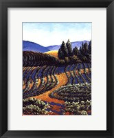 Framed Dawn Vineyards
