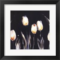 Succulent Tulips Framed Print
