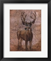 Nature Spirit I Framed Print