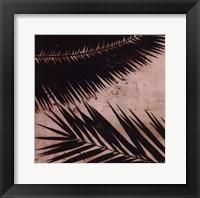 Framed Palmy I