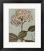 Botanique Bleu IV Framed Print