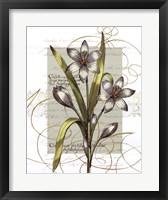 Florilegium I Framed Print