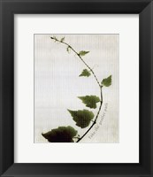 Route One Framed Print