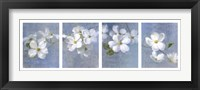Framed Blossom Panel