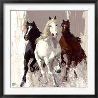 Framed Les chevaux I