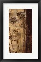 Framed Sundew II