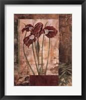 Framed Jeweled Iris I