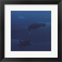 Framed Sea Turtles I