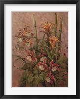 Exotics Collection l Framed Print