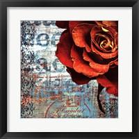 Framed Graffiti Rose