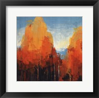 Framed Maples I