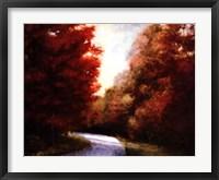 Framed Maple Drive