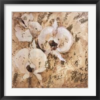 Fragrant Snow II Framed Print