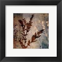 Organic Elements II Framed Print