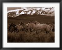Framed Horses Running I