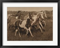 Framed Horses Running II