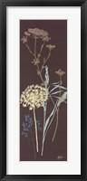 Framed Chocolate Meadow Grass
