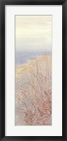 Framed Coastal Grasses III