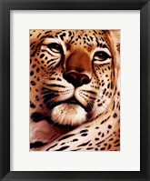 Rest On Serengeti Framed Print