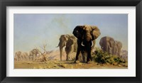 Framed Ivory Is Theirs