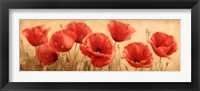 Framed Poppies Grace I
