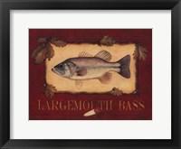 Framed Bass