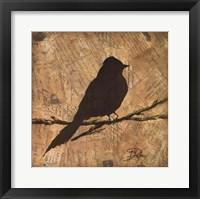 Bird Silhouette I Framed Print