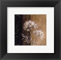 Delicate Beauty I Framed Print